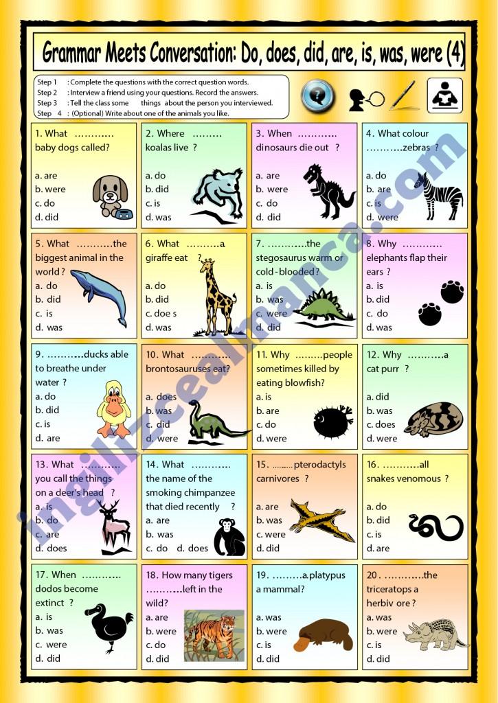 ingilizce-hayvan-isimleri